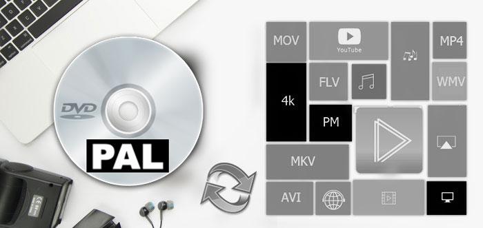 Free Rip PAL DVD