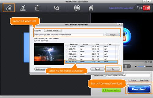 video 4k downloader online
