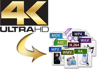 4K to Video Conversion