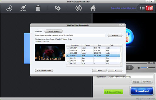 Free Movies to iPad Downloader