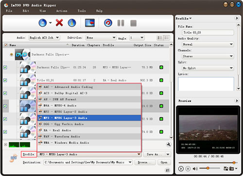 Top 5 DVD Audio Rippers - ImTOO DVD to Audio Converter